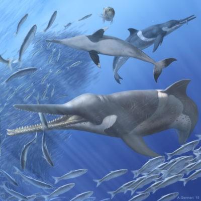 zifide antichi ecosistemi oceanici