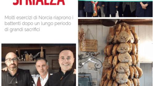 Gentiloni a Norcia: venite a gustare il tartufo, Norcia vi aspetta