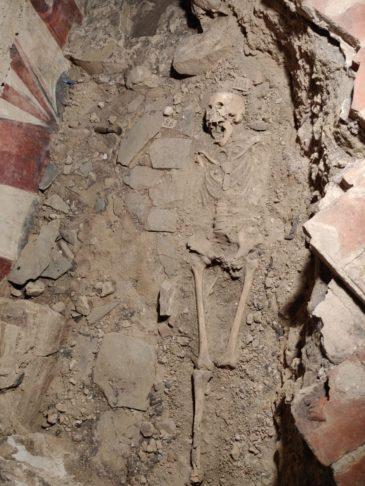 scheletro rinascimentale