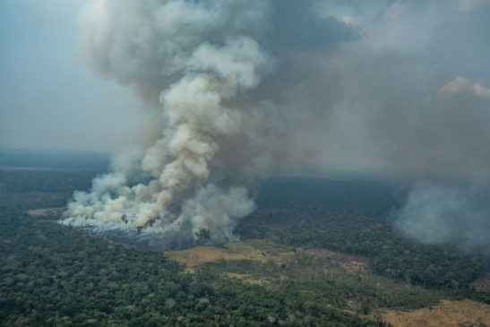 amazzonia under fire