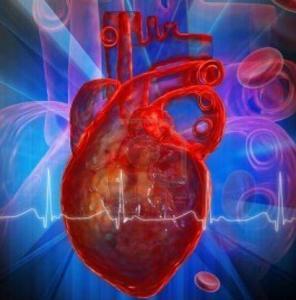cuore-artificiale-vad