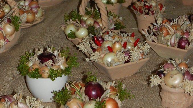 festa della cipolla di cannara