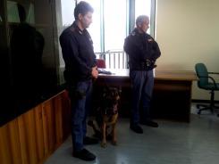 conferenza_terni-7-arresti (2)