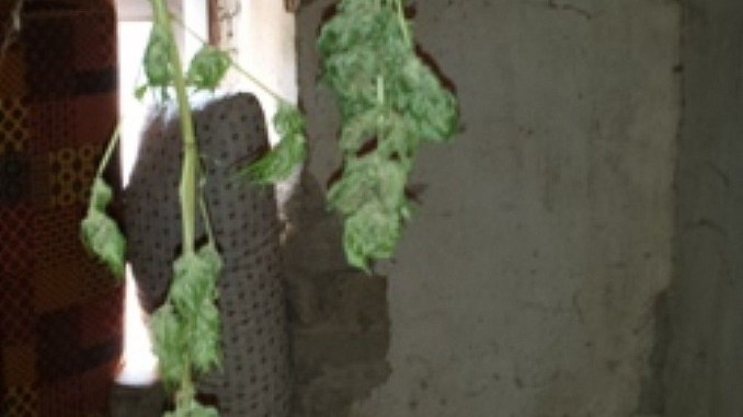 Fontivegge, smantellata base dello spaccio in un garage