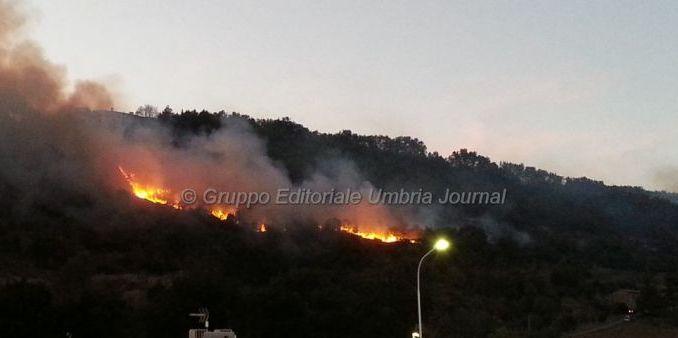 Incendio scoppiato nel bosco a Pianello di Perugia