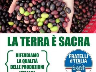 #Terranostra, De Sio, (FdI), difendiamo la qualita' delle produzioni italiane