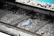 Investita dal treno a Perugia, la donna ha perso entrambe le gambe [FOTO E VIDEO]