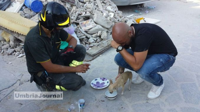 Terremoto, Vigili del fuoco Umbria, anima e cuore con sui luoghi del sisma