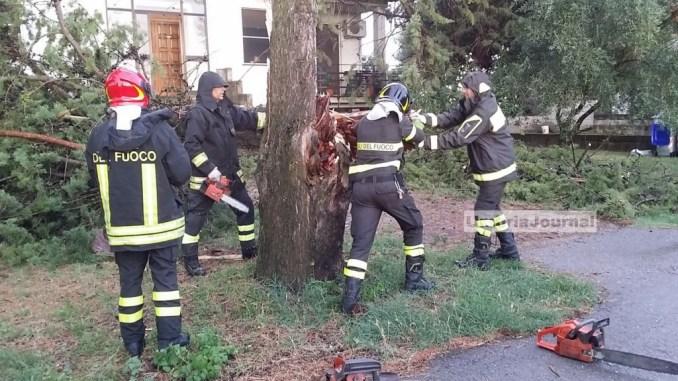 Maltempo Bastia Umbria, cipresso si schianta vicino a una casa