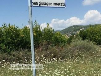 Degrado del verde a Perugia, Camicia, perdono pazienza anche santi