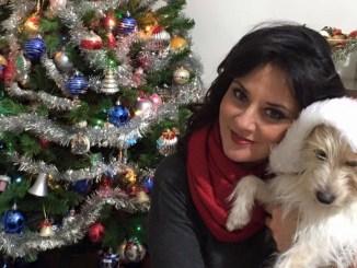 Stop ai botti a Perugia! Proteggiamo uomini ed animali