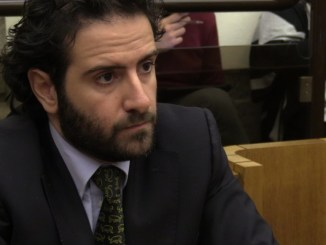 """Leonelli (PD), """"Bene la previsione di riconoscere il danno indiretto"""""""