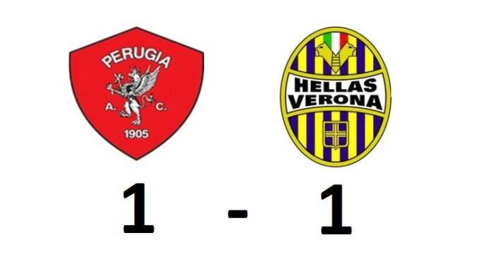 La sfida al Curi contro il Verona è terminata sull'1-1