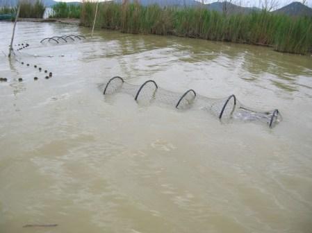 antibracconaggio-ittico