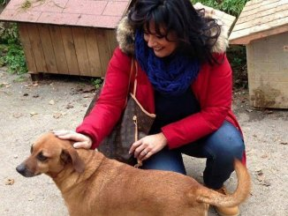Benessere animali Mori Leonardi, un grande traguardo per la città di Perugia