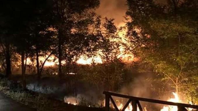 Incendi, venerdì di fuoco in Umbria, numerosi incendi divampati