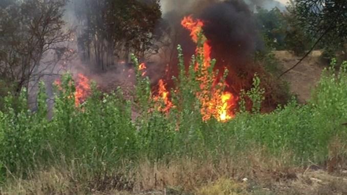 Incendio di Moiano, continua l'opera di bonifica dei vigili del fuoco