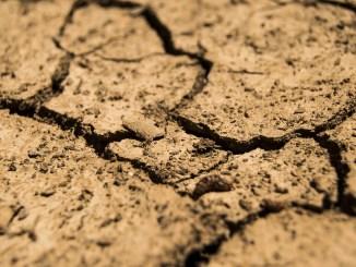 Indennizzi siccità 2017 e maltempo, CIA: «Che cifre ridicole»