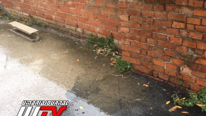 Via Luzzatti Fontivegge Perugia ripulita da siringhe dopo denuncia Camicia