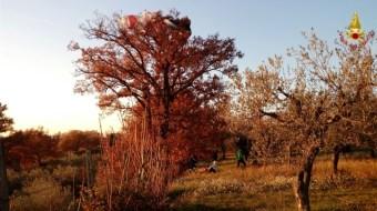 Deltaplanista perde controllo e cade su una quercia, recuperato