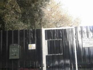 Schifanoia, canile bunker? M5S chiederà ispezione insieme alle associazioni animaliste