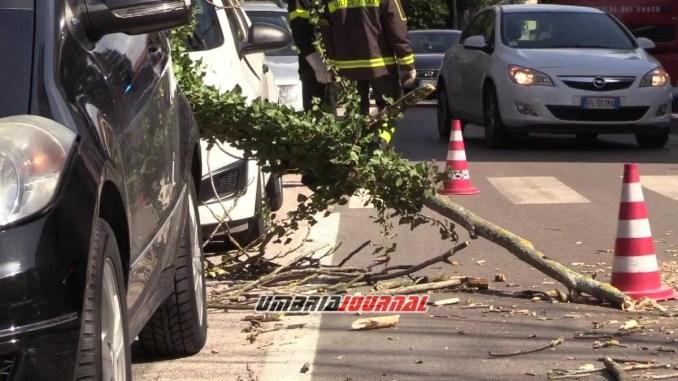 Pianta si schianta su due auto a Ponte san Giovanni, nessun ferito