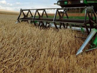 Terremoto, Cia, Umbria agricola in tre anni perde 14 per cento di fatturato