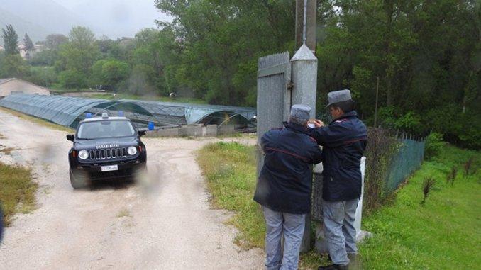 Sequestro allevamenti ittici Valnerina, la Ittica Tranquilli precisa