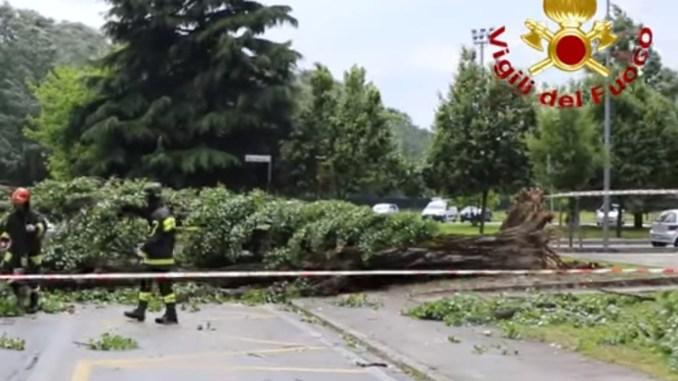 Violento temporale a Terni, ramo cade sopra a una persona, salvata