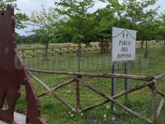 Cimitero per animali d'affezione, Camicia, Barelli ha fallito ancora
