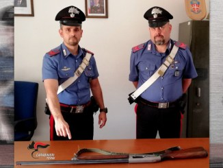 Abbattono cinghiali, Carabinieri denunciano cacciatori abusivi, successo nell'Orvietano