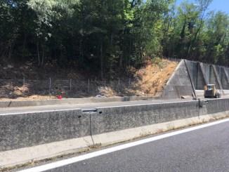 Andrea Liberati critica Anas e cantieri, M5s sulle barricate per estate difficile