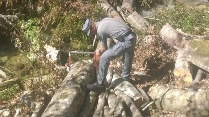 Maxi sequestro di 400 quintali di legname sul Parco dei Sibillini, taglio sconsiderato