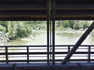 Cadavere trovato nel fiume Tevere all'altezza del Ponte Vecchio