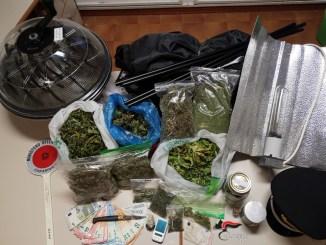 Coltiva marijuana in serra a casa, carabinieri arrestano un 20enne