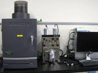 Ivis Lumina Serie III,studi preclinici per individuarecellule leucemiche