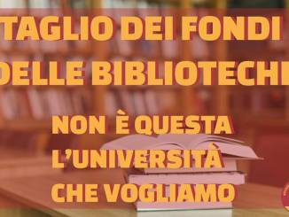 Udu critica amministrazione Perugia per bando gestione biblioteche