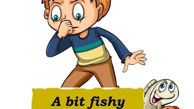 Il pesce puzza, la gente si arrabbia e Fiorini vuol vederci chiaro, a Terni in via Mercurio