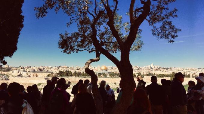 Pellegrinaggio in Terra Santa con Diocesi Assisi, ecco come fare