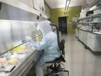 Guerra al covid-19 ci sono almeno sei vaccini in fase tre