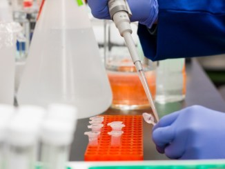 Coronavirus, al via da oggi in Umbria i test rapidi per covid-19