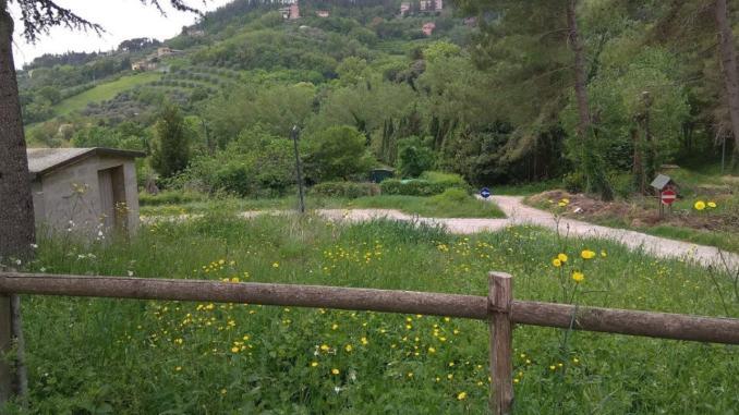 1 maggio riapertura orti Ponte della Pietra e Parco di Santa Margherita