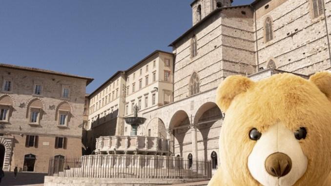 Rasty, il simpatico orso che si aggira per il centro di Perugia