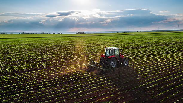 Fondo europeo agricolo per lo sviluppo rurale, penalizzata l'Umbria