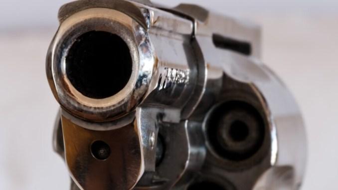 Stretta controlli armi, proposta legge Verini firmano PD-M5s-Leu-Iv