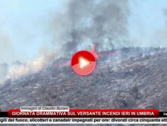 Montegualandro, incendio devasta bosco, divorati circa cinquanta ettari di verde