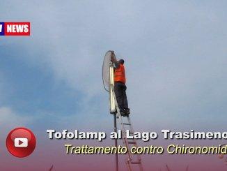 Lago Trasimeno, in funzione i tofolamp, contro i chironomidi