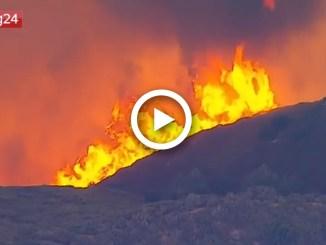California in fiamme: bruciata un'area pari alla città di Los Angeles