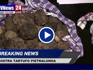 Mostra mercato del tartufo, a Pietralunga un'edizione 'Straordinaria'