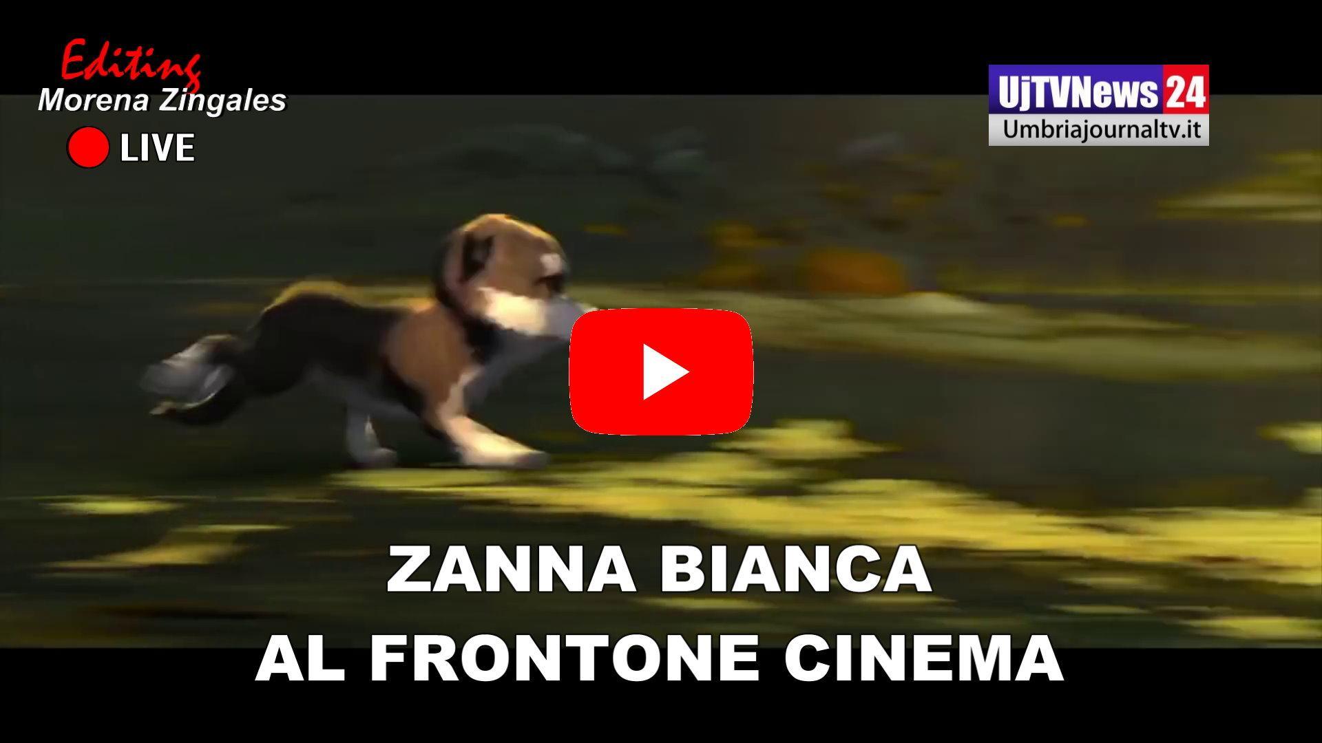 Zanna Bianca, è al Cinema del Frontone di Perugia